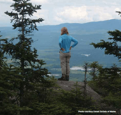 Contact the Maine Mountain Collaborative.