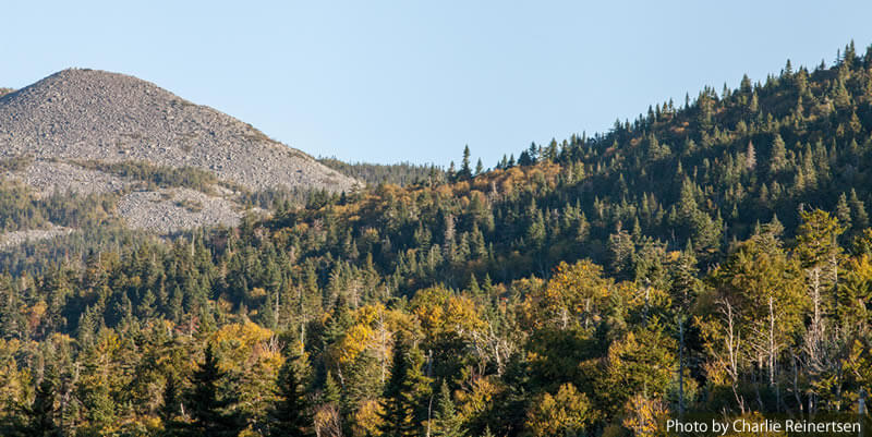 Who We Are: Maine Mountain Collaborative, preserving Maine's forestland.